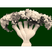 Royal Creamware Occasions Quintal Flower Horn